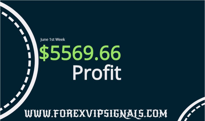 forex profit