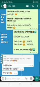 forex signal pro