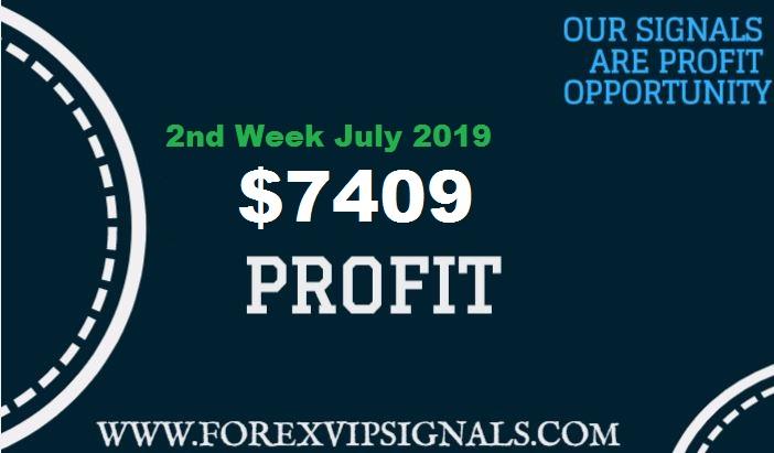 Forex Profit Report Forex Vip Signals