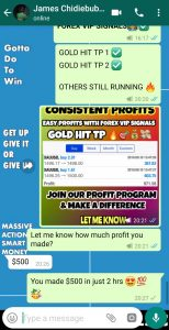 best forex signal provider UK by forex vip signals