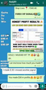 best forex signal provider in the world by forex vip signals