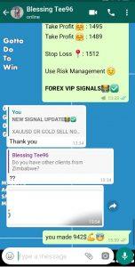 best forex signals provider by forex vip signals