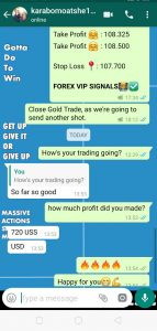 forex signals provider by forex vip signals