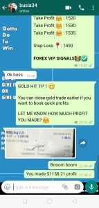 forex trading signals provider by forex vip signals