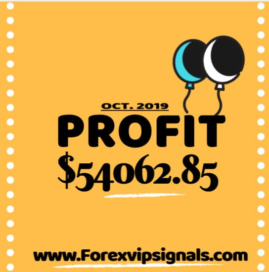forex signal provider