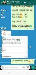 fx trading signals