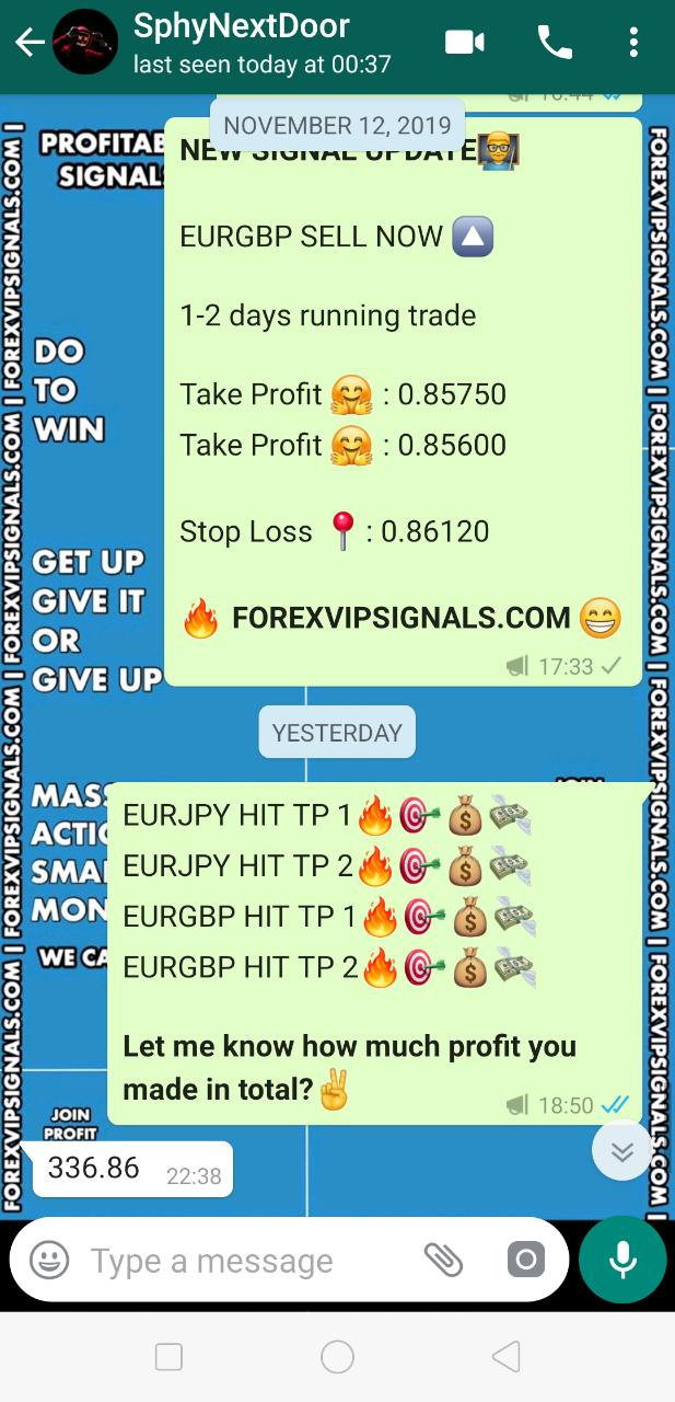 forex signals best performance