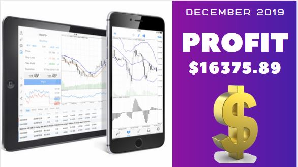 December forex signals reports 2019