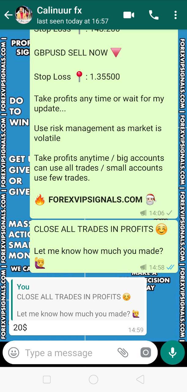 forexvipsignals.com review