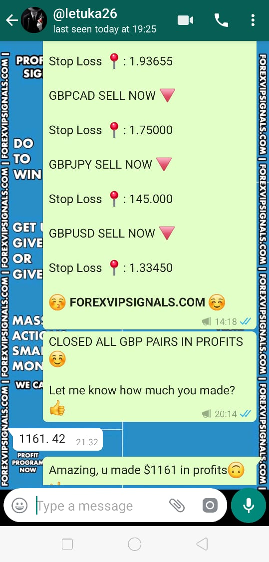 forex signals review