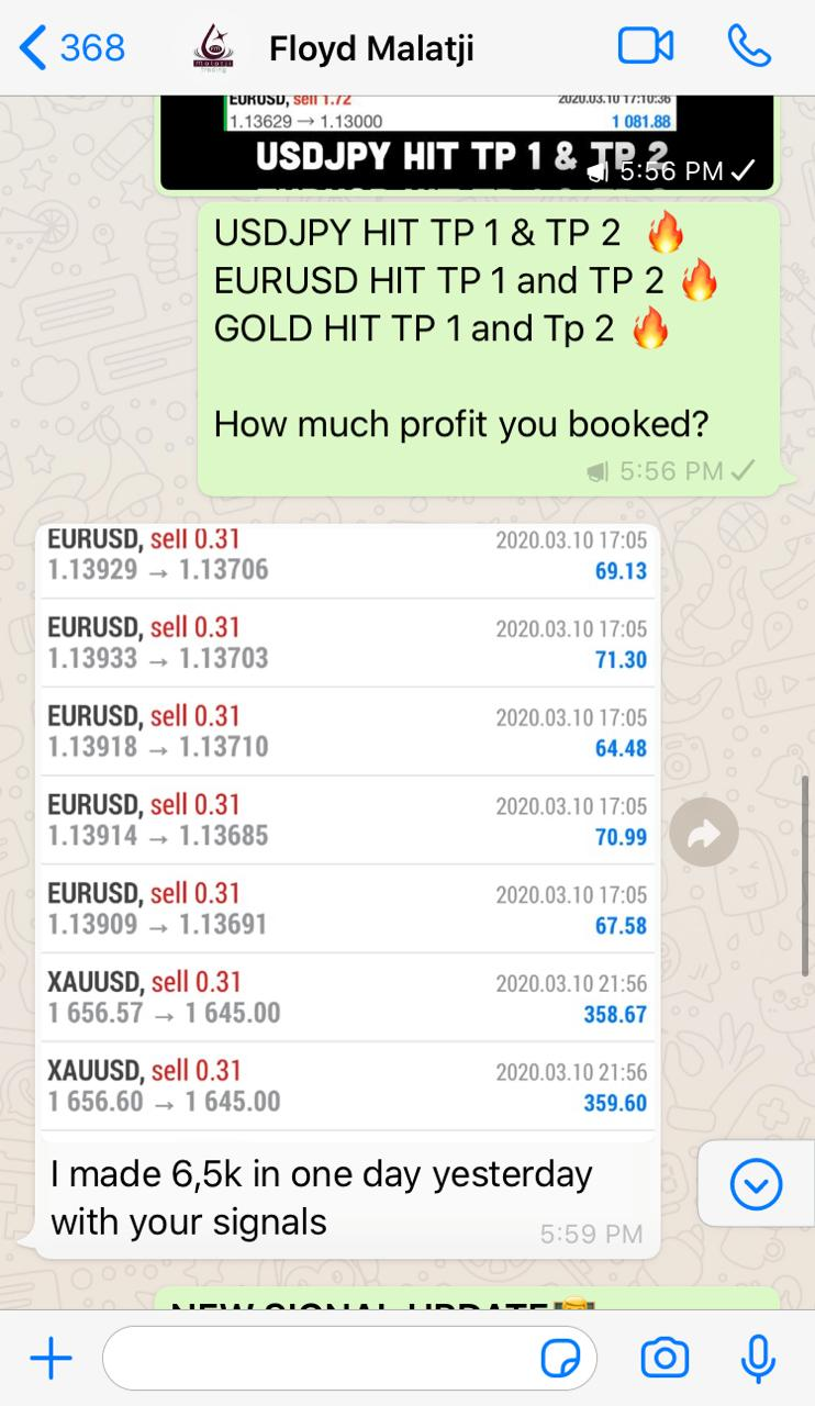 forex signal by forex vip signals