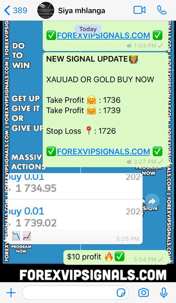 forex signals profit with forex vip signals