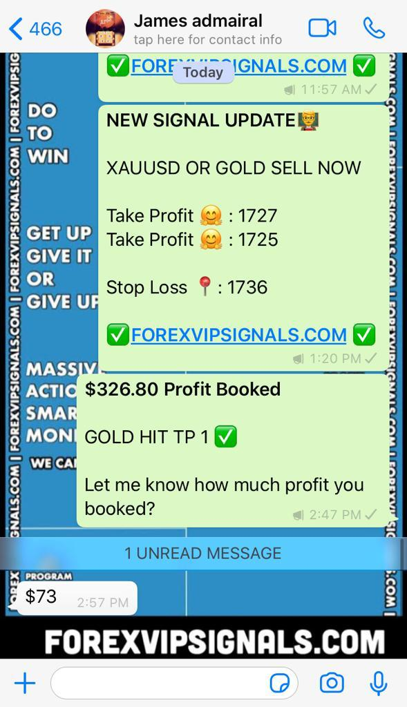 trading signal online by forex vip signals