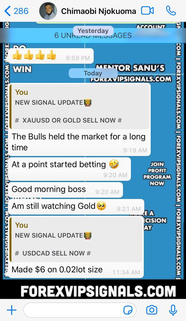 daily forex signals by forex vip signals