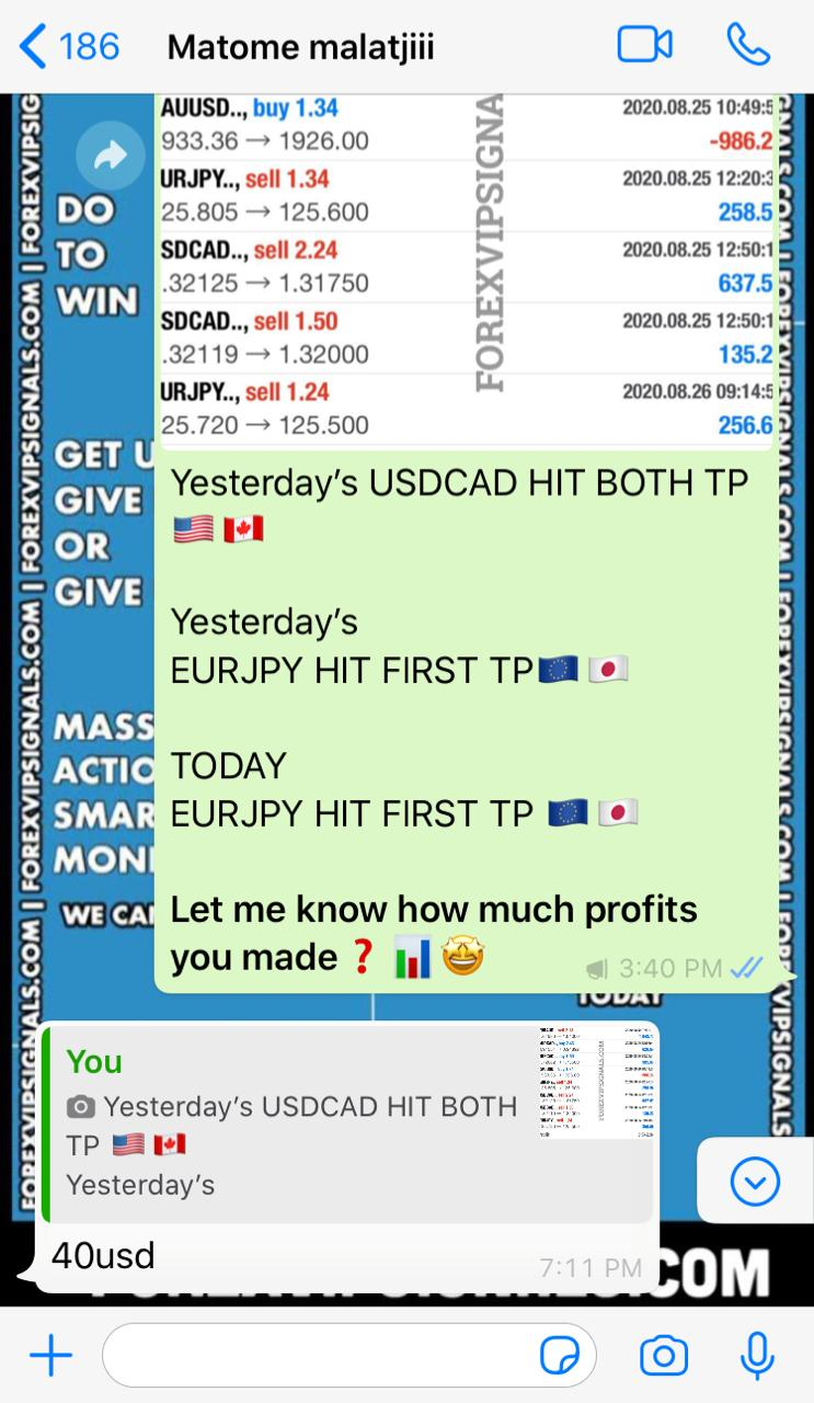 accurate forex trading signals by forex vip signals