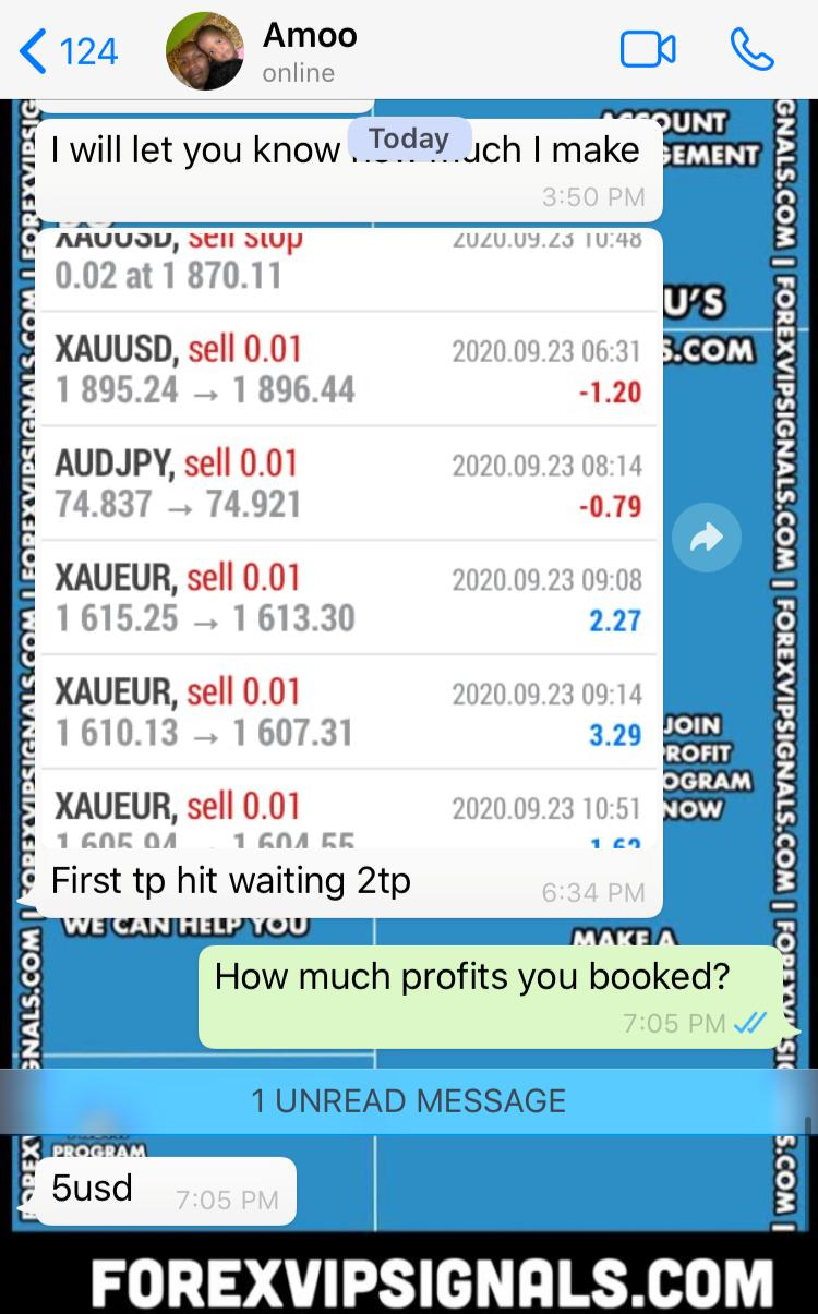 daily forex signals live with forex vip signals