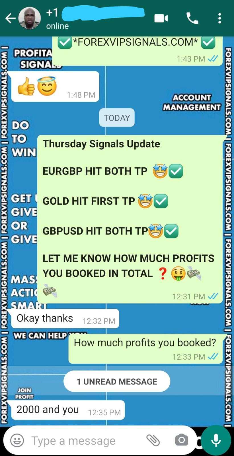 best forex signal provider with forex vip signals