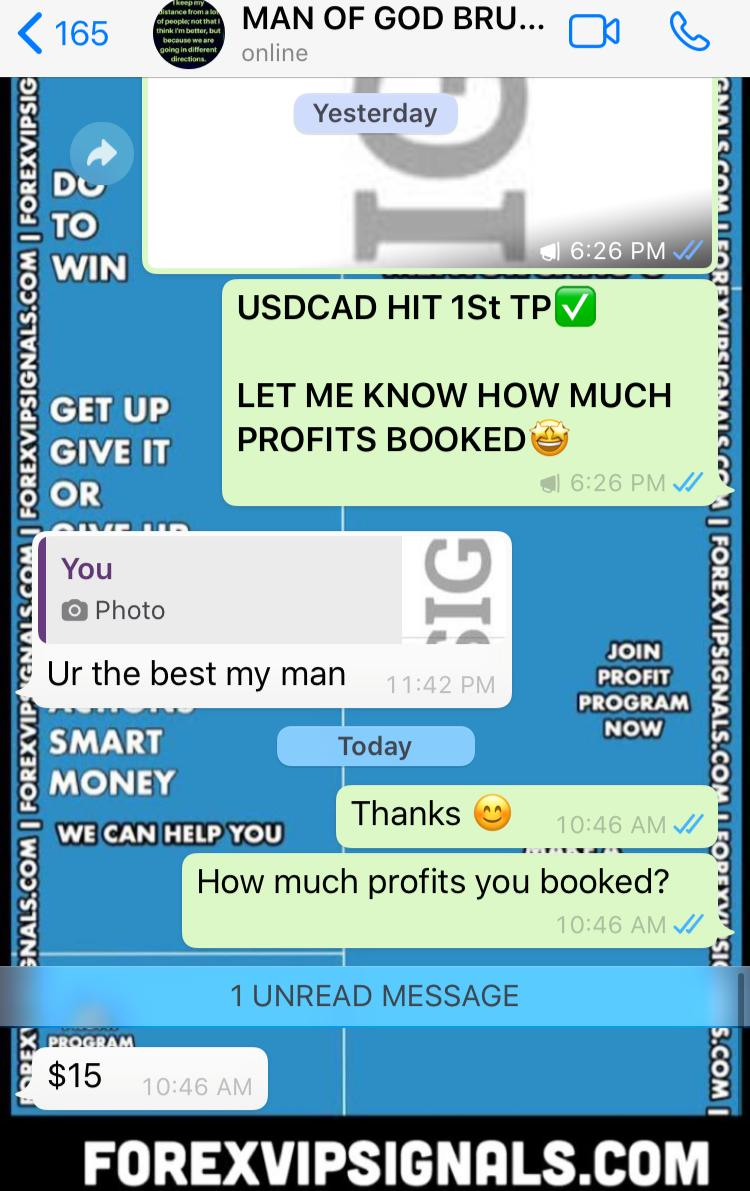 best forex trading signals with forex vip signals