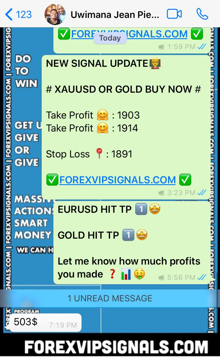 signal forex real time with forex vip signals