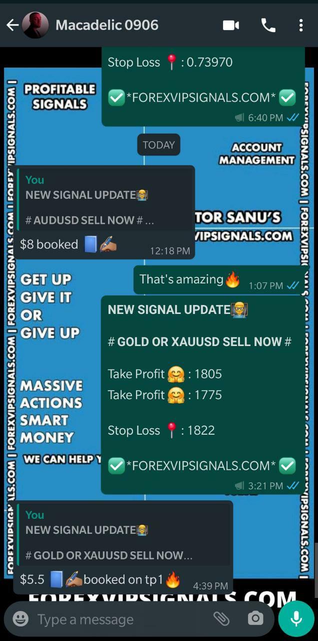 telegram trading signals by forex vip signals