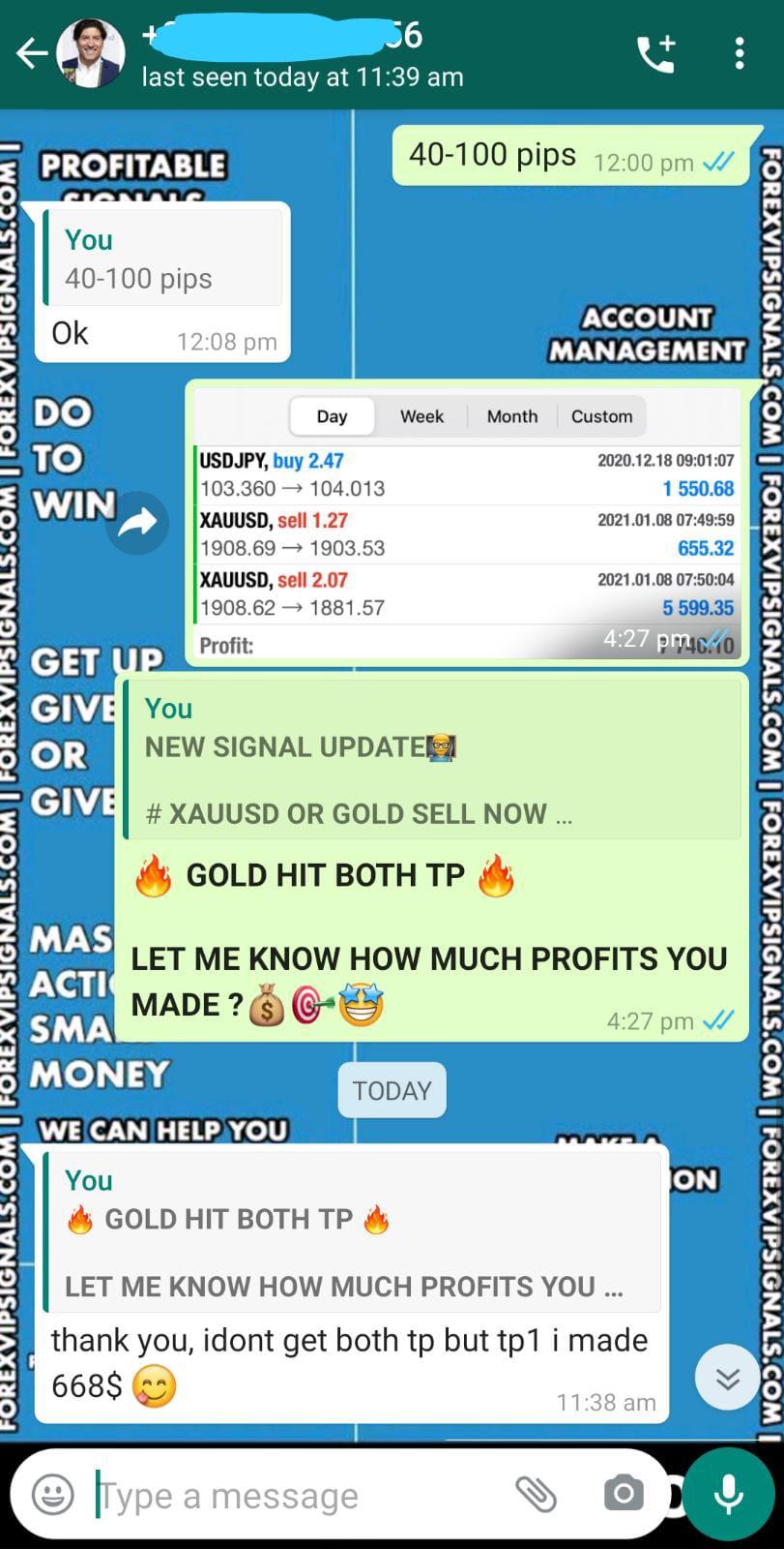 whatsapp forex signals by forex vip signals