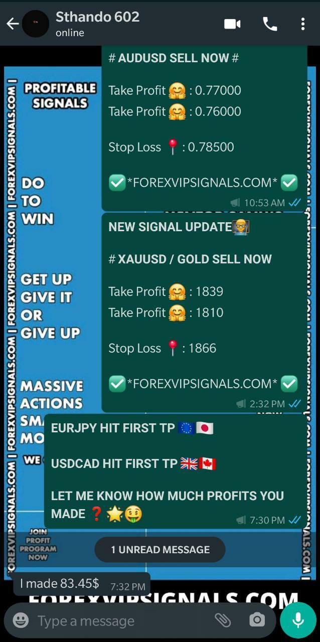 best whatsapp forex signals by forex vip signals