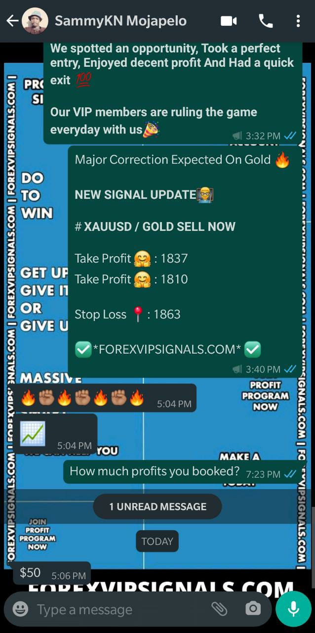 daily gold trading signals with forex vip signals