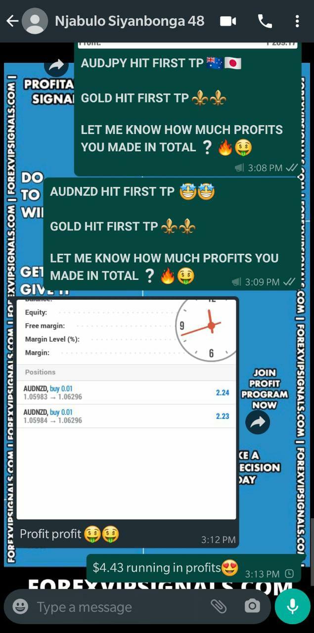 forex signals telegram with forex vip signals