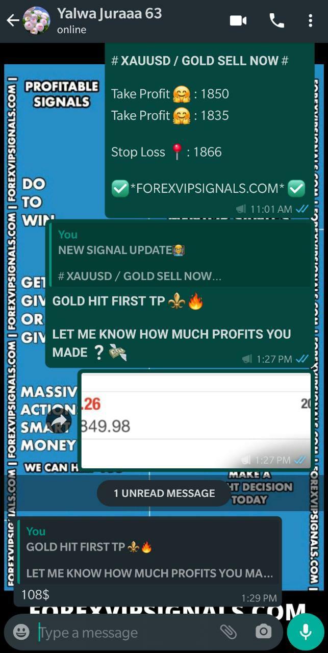 fx profit signals by forex vip signals
