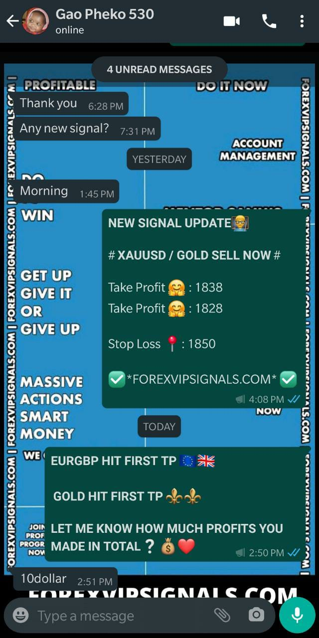 reliable forex signals with forex vip signals