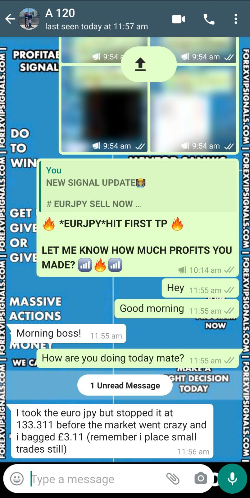 live trading signals by forex vip signals