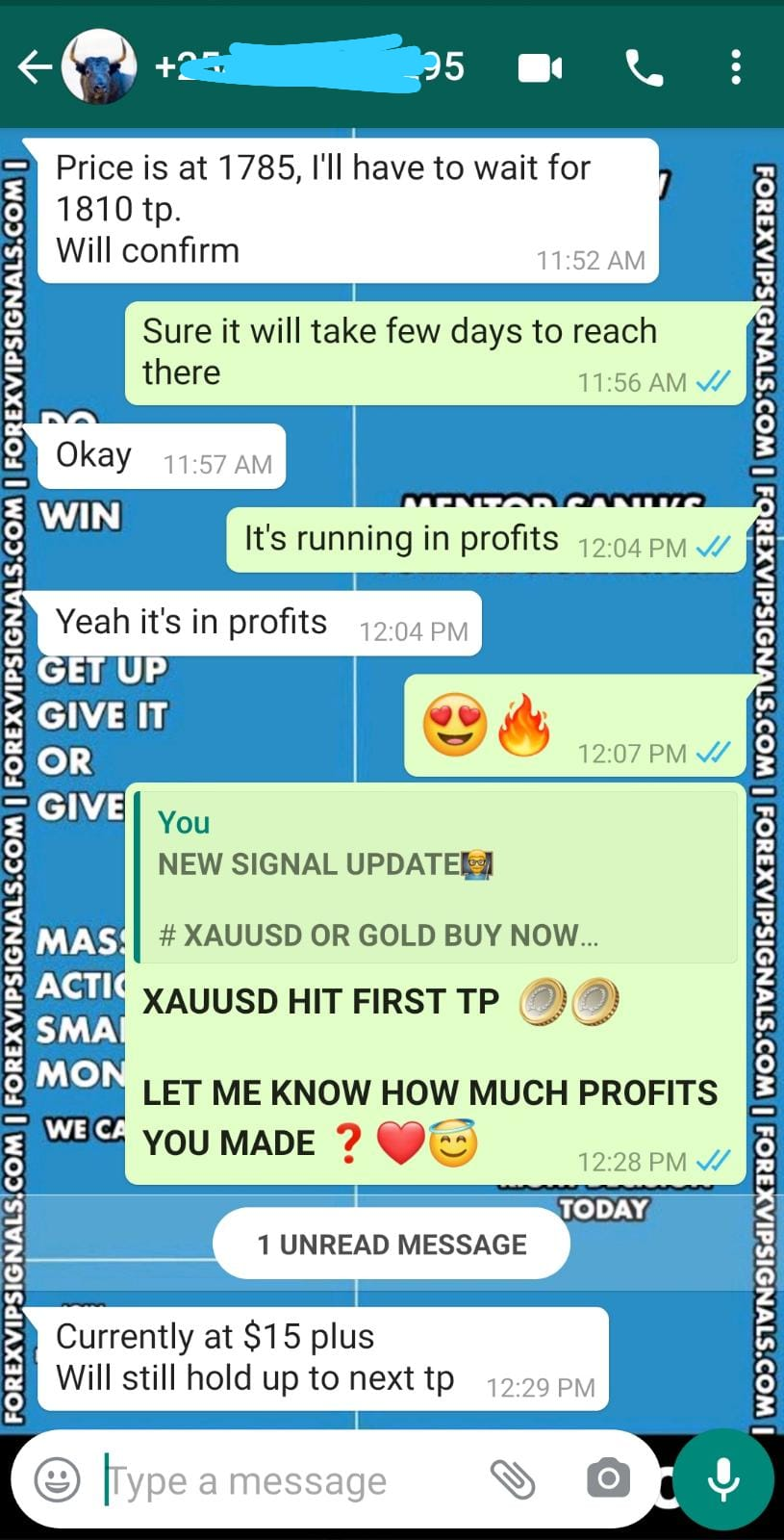 forex vip signals telegram by forex vip signals